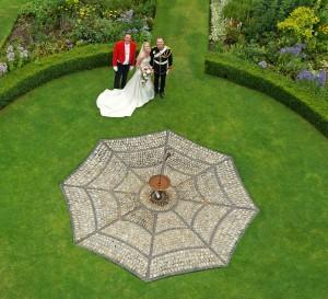 Spider gardenedit @ Hoveton Hall Gardens