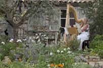 Xenia Horne Harpist